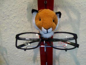 DSC02528 300x225 - Brillenfassungen